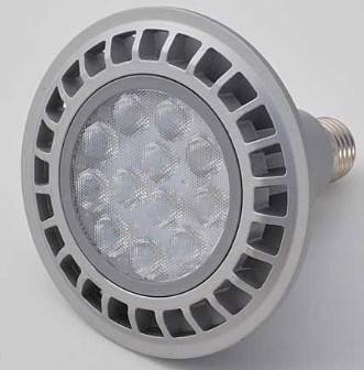 Dimmable PAR38 16 Watt LED Spot Light