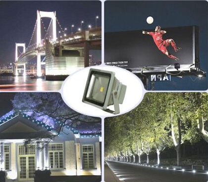 50W IP65 3000lm Day White Waterproof LED Flood light