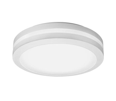 Ceiling-Mount Outdoor White LED Decorative Light