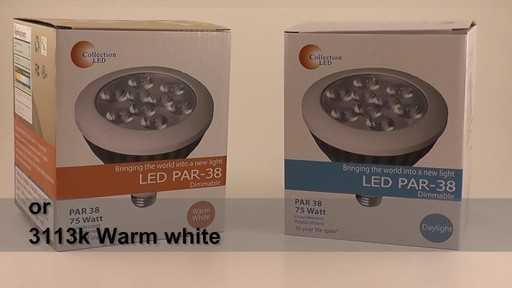 17 Watt PAR38 LED indoor Flood Light Bulb