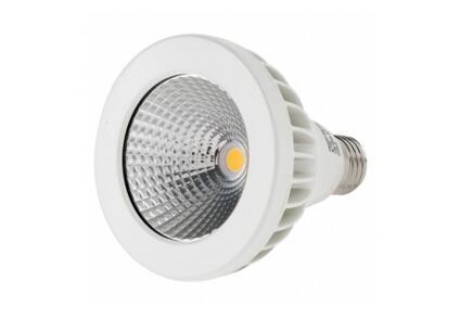 PAR30 13W spot light LED replacement bulb