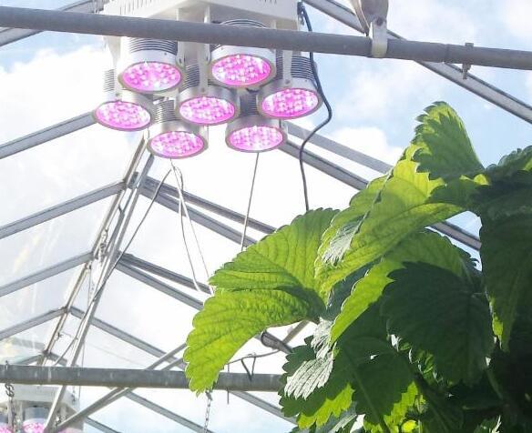 The importance of LED lighting for LED market