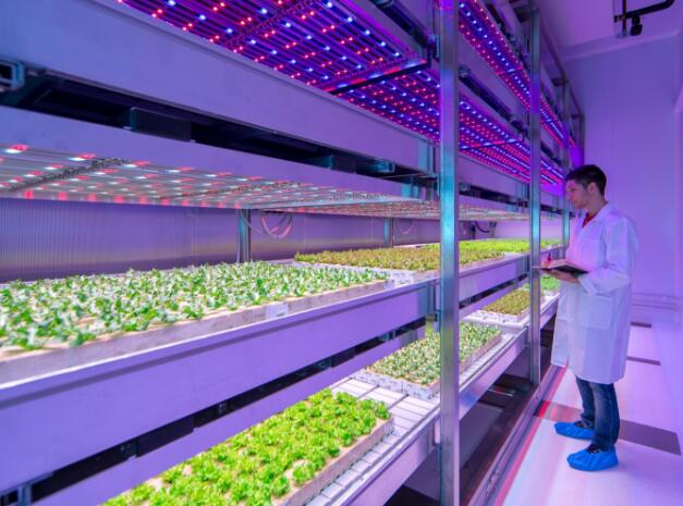 LED grow light is a new breakthrough in LED lighting business