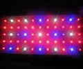 supernova led grow lights inhibition of urban crime