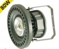 80w LED Explosion Proof Light
