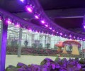 Advanced led grow lights business have huge opportunities