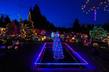 what about LED Christmas Lights