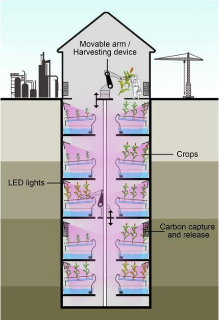 LED lighting systems, waste coal mines and so on become vertical farms