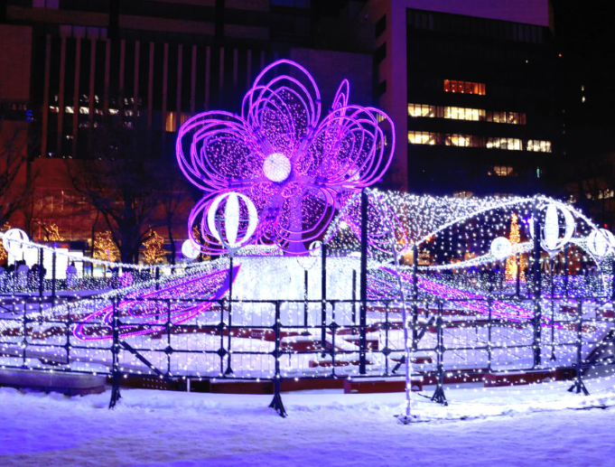 Sapporo White Light Festival uses 810,000 LED lights