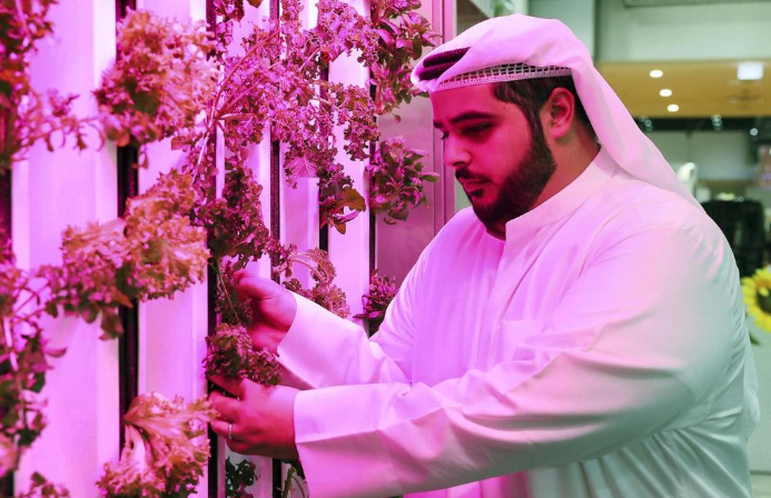 The Abu Dhabi Investment Office invested US $ 100 million to develop modern agriculture such as vertical farms