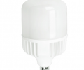 25 Watt 3750 Lumens LED Retro-Fit Bulb