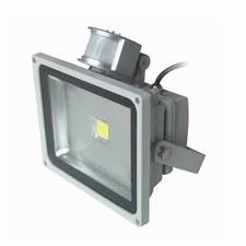 Motion Sensor COB LED Flood Lights