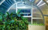 2020 global smart lighting market will reach 59.1 billion USD