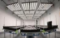 Challenges and opportunities for the development of the plant lighting LED market