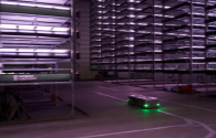 Denmark's super large vertical farm LED lights all-weather lighting