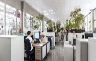 Philips lighting helps innogy create Europe's leading innovative office environment
