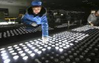 Who will be the king of China 's LED lighting business in 2017